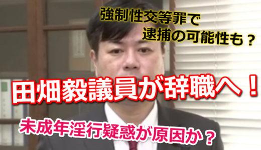 田畑議員が辞職へ!未成年淫行疑惑が原因か?強制性交等罪で逮捕の可能性も?