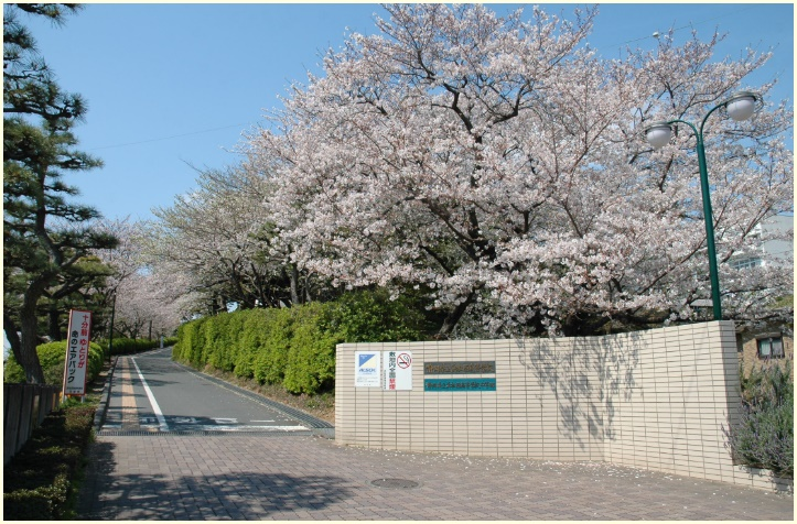 静岡県,県立高校,浜松西,男性教諭,名前,顔画像,生徒を斜面から突き落とす,理由,原因