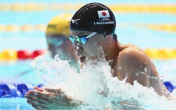 渡辺一平,経歴,父親(家族),LDH所属,世界記録保持者,世界水泳銅メダル