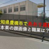 山本果,やまもとはたし,顔画像,職業,勤務先,会社,解雇,愛知県豊橋市煽り運転