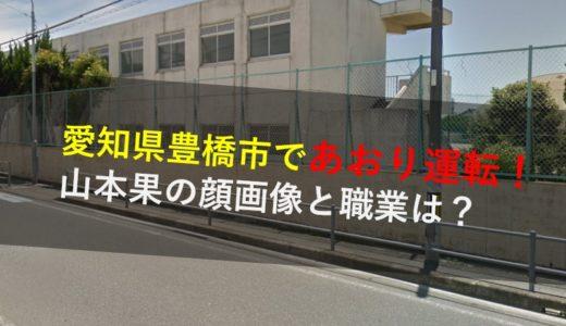 山本果の顔画像!職業や勤務先の会社は解雇?愛知県豊橋市煽り運転