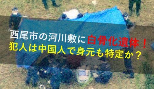 西尾市の河川敷に白骨化遺体!犯人も中国人?死因は?場所や身元も特定か
